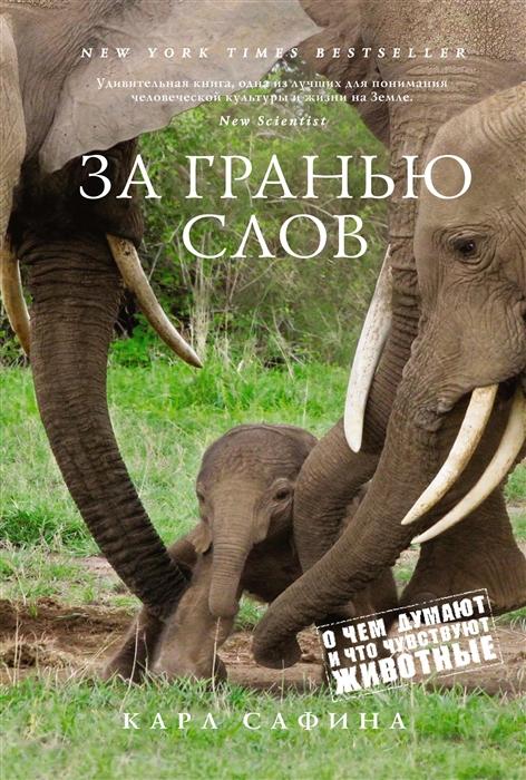 http://chelib.ru/wp-content/uploads/img/books/safina_za_granyu_slov.jpg